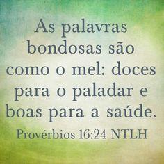 Provérbios 16. 24 NTLH