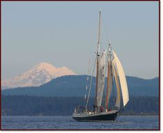 Spike Africa - Schooners North Charters - amazing scenery to sail in!