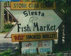 Stone Crab, Sarasota Florida, Fishing Life, History, Historia, History Activities