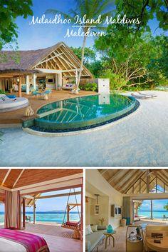 MILAIDHOO ISLAND MALDIVES   Malediven: Paradiesisch entspannen im UNESCO-Biosphärenreservat mit vielen inkludierten Extras und Spot zur Beobachtung von Walhaien und Mantarochen in der Nähe