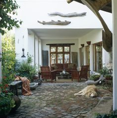 Dog sleeping on the patio, my favorite image of this outdoor living space.