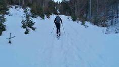 Die urige Steiner Hochalm liegt auf 1260 m idyllisch über Scheffau. Beim Skitourengehen erlebt man die Berge Tirols von einer außergewöhnlichen Seite. Eine unberührte, tief verschneite Winterlandschaft am Wilden Kaiser oder den Kitzbüheler Alpen beeindruckt mit absoluter Ruhe und eindrucksvollen Ausblicken. Das Gefühl von Freiheit und Leichtigkeit bei einer Pulverschneeabfahrt oder im Firn lässt sich nicht beschreiben – sondern nur erleben! #echtbärig🐻#wilderkaiser🌄 #esgehtbergauf🥾 Wilder Kaiser, Snow, Outdoor, Winter Vacations, Winter Scenery, Freedom, Mountains, Outdoors, Outdoor Games