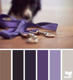 Unleashed Palette - http://design-seeds.com/index.php/home/entry/unleashed-palette