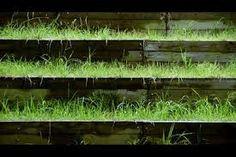 Resultado de imagen de jardin japones moderno