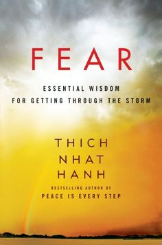 So far, all of Thich Nhat Hanh's books have beed most helpful to me in understanding how to deal with my sorrows. The examples in this book has brought a greater understanding of fear and how I can deal with it.