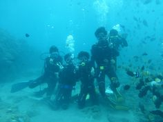 """channel islands de californie 