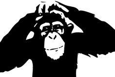 macaco sombreado - Pesquisa Google
