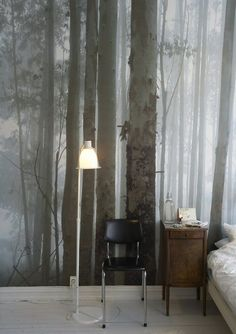 Photographic wallpaper trees