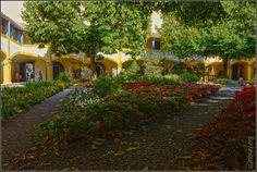 O jardim do lar de idosos em Arles, na França. Van Gogh ficou aqui em 1888 e 1889 e pintou o jardim.  Fotografia: Howard Stanbury no Flickr.