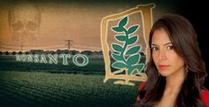 "FOOD BABE: 'THE SHOCKING EMAIL FROM MONSANTO: WHY I AM SUBMITTING A FOIA REQUEST' Newly discovered emails reveal ""independent"" biotech scientist received thousands from Monsanto"