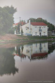 Municipality of Nea Koutali has de wetland of Diaporou of 500 acres extend, S.W. of de island at de background  of Kontia bay n inside de administrative bounds of de Municipal Department of Kontia. Lemnos Island, Lesvos, North Aegean_ Greece