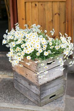 Rustic Wooden Crates Wedding Ideas How To Use Wooden Crates Wedding Ideas At Rustic Weddings ❤ Wedding decor: NorthernHare.How To Use Wooden Crates Wedding Ideas At Rustic Weddings ❤ Wedding decor: NorthernHare. Wooden Crates Wedding, Wooden Crates Garden, Wooden Crate Furniture, Rustic Wedding Inspiration, Wedding Ideas, Daisy Wedding Decorations, Church Decorations, Wedding Trends, Daisy Wedding Flowers