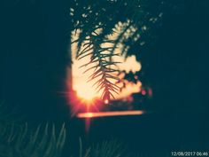Girly Pictures, Good Morning, Celestial, Sunset, Photography, Outdoor, Bom Dia, Outdoors, Buen Dia