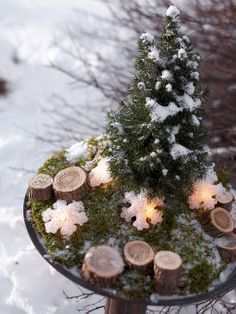 Spruce Outdoor Centerpiece  Who says centerpieces are just for the Christmas table? A tiny Alberta spruce stands out in this miniature landscape centerpiece. Snowflake lights and wood disks cut from a branch rest on a bed of green sheet moss -- creating a rustic, woodsy scene.