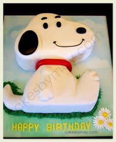 Snoopy Cake with Instructions Charlie Brown the Gang