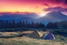 Book Your Campsite