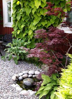 Landet Krokus: I Bikas förunderliga trädgård - Hello Japan Garden, Water Garden, Shade Garden, Dream Garden, Garden Inspiration, Backyard Landscaping, Beautiful Gardens, Outdoor Gardens, Planting Flowers