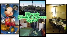 Military families can stay on Walt Disney World property at Shades of Green. This is a lovely spot to stay. (3x for us). Gorgeous grounds, walking distance to the Polynesian (& monorail), HUGE rooms, really affordable. Nice benefit for military (and associated) families. Only neg: very little Disney theming.