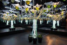 Hortus, the future of urban gardening?