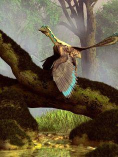 Urvogel: Nicht Fisch, nicht Fleisch, nicht ganz Reptil, nicht ganz Vogel -...
