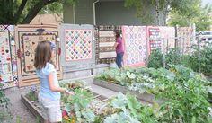 Diary of a Quilter - a quilt blog: Garden Quilt Show