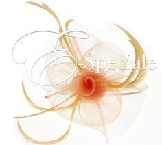 Cerchietto Tulle e Piume - Shop per Colore - Rosa - accessori e gadget per matrimoni e feste - E-speciale