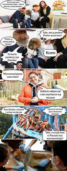👌🏻 Polish Memes, Funny Mems, Best Memes, Einstein, Haha, Beautiful Pictures, Jokes, Funny Memes, Husky Jokes