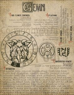 7 pages set about GEMINI Astrological Sign Correspondences. They are an ideal addition to your own Wicca Book of Shadows. Zodiac Signs Gemini, Zodiac Star Signs, Astrology Zodiac, Gemini Sign, Astrological Sign, Wiccan Witch, Magick Spells, Witchcraft, Astrology Numerology