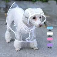 Resultado de imagen para capas de perros