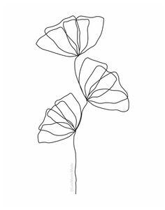 Easy Flower Drawings, Flower Art Drawing, Simple Line Drawings, Line Drawing Art, Botanical Line Drawing, Outline Art, Outline Drawings, Art Drawings, Flower Outline