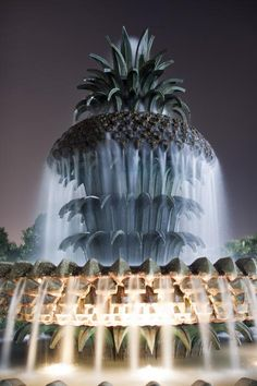 Pineapple Fountain Charleston SC - One of my favorite things ever!!
