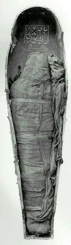 Momia del Egipto antiguo
