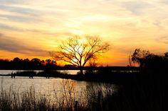 Peach Blossom Creek Photo taken by Leslie Mann