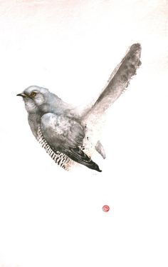 Karl Martens, Cuckoo Male (Unframed) | Cricket Fine Art