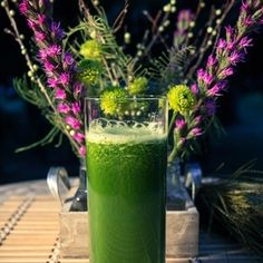 Dr. Oz's Green Drink Recipe from JuicerMama - healthy drink recipes.