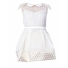 Elena Perseil Lace And Brocade Cocktail Mini Dress ($916) ❤ liked on Polyvore featuring dresses, white, cocktail mini dress, skater skirt, cocktail dresses, white skater skirt and short lace dress