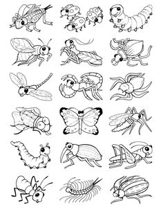 Detailed Coloring Page – Bugs in Our Garden | Help teaching ...