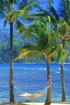 Kauai Beach, Hawaii..