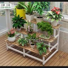 Small Balcony Garden, Balcony Flowers, Balcony Plants, House Plants Decor, Indoor Balcony, Plant Shelves Outdoor, Garden Shelves, Indoor Flower Pots, Indoor Plant Pots