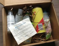 Blissmo Box Review - Cleaning Favorites - July 2013