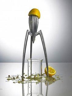 #Fotochannels #lemon #press #spider http://fotochannels.com/zoom/CRB0093188/