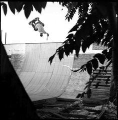 BEN SCHROEDER Skate 3, Golf, Eggplants, Skateboarding, Art, Art Background, Skateboard, Kunst, Performing Arts