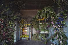 Abandoned House In Detroit Brought Back To Life With 4,000 Flowers - After the event the structures will be dismantled, recycled, and the space used to grow flowers.