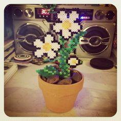 A potted Daisy plant! ^_^ #perler #perlerbeads #hama #hamabeads #fusebeads #kandi #pixelart #8bit #pixel #flora #daisy #plant #houseplant #artsandcrafts #crafts #art