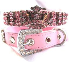 Leather Collar with Rhinestone Crown