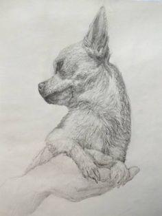 "Saatchi Art Artist Dolores Ranea; Drawing, ""Puppy"" #art"