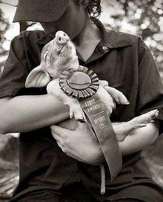 Pig winner! I love this look of sheer joy.