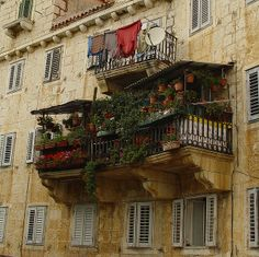 Garden Balcony, Brac Island, Croatia photo via lisa A little different type of garden but garden nonetheless. Looks like it is using every inch of space. Tropical Plants, Aesthetic Pictures, Future House, Beautiful Places, Scenery, Around The Worlds, Exterior, Island, House Styles