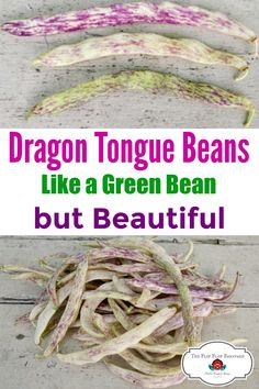 Do you like green beans but want to grow something more beautiful? Dragon Tongue Beans are for you! I love growing beautiful and colorful vegetables in my garden.