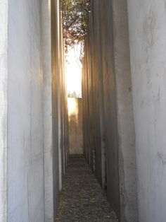 Best of Europe Photos: Garden of Exile at the Jewish Museum--Berlin by Blair Mosberg, via Behance